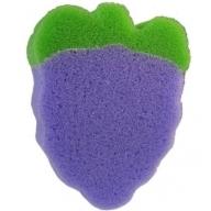 Blackberry Sponge