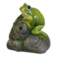 Croak Alert - Frog on Rock (B)