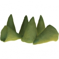 Big Cones - White Sage