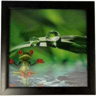 Iconic 3D 30x30cm - Spa Frog