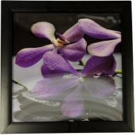 Iconic 3D 30x30cm - Spa Violets