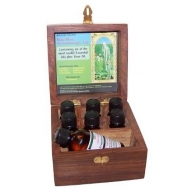 Mini Plus Aromatherapy Kit - Box