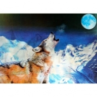 Lrg High Def 3D Pic - Wolf Howling at Moon