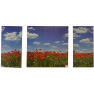 Poppy Fields Forever - Left 60 x 30cm Middle 60 x 60cm Right 60 x 30cm